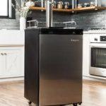 Această unitate este perfectă pentru orice începător pe piața frigiderelor de butoaie
